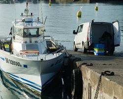 Les Viviers De Bassinic - Plouguerneau - Les Ligneurs de l'Ile Vierge