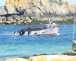 Les Viviers De Bassinic - Plouguerneau - De la mer à l'assiette - Les bateaux de pêche - L'île Venan, petit bateau côtier