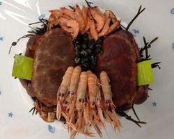 Les Viviers De Bassinic - Plouguerneau - Photos - Plateaux de fruits de mer